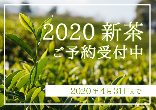 2020新茶ご予約受付中